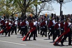 2016 nacional Cherry Blossom Parade en Washington DC Imágenes de archivo libres de regalías
