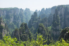 Nacional Forest Park de Zhangjiajie Foto de archivo libre de regalías