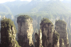 Nacional Forest Park de Zhangjiajie Imagem de Stock Royalty Free