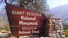 Nacional Forest Sign de la secoya gigante Foto de archivo