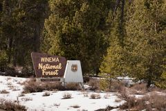 Nacional Forest Welcome Sign de Winema das madeiras do inverno Foto de Stock Royalty Free