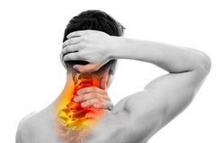 Nackenschmerzen - männlicher Anatomie-Sportler, der Kopf und Hals hält - Cervi Lizenzfreie Stockfotografie