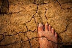 Nackte Füße auf trockenem Boden lizenzfreies stockbild