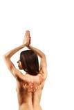 Nackte Rückseite des jungen Mädchens mit Hennastrauch mehendi Lizenzfreie Stockfotografie