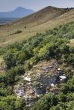 Nackte Schichten der Kruste auf Lysaya-Berg, Russland Stockfotografie