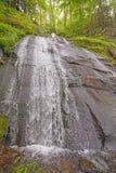 Nackter Fels fällt im Frühjahr stockfoto