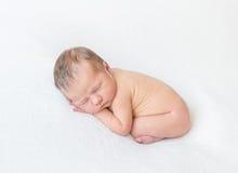 Nacktes Baby, das auf dem Bauch, oben gekräuselt schläft Stockbild
