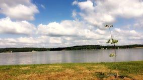 Nacogdoches del lago Fotografia Stock