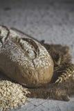 Nacos do pão integral Imagens de Stock Royalty Free