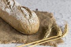 Nacos do pão integral Fotografia de Stock Royalty Free