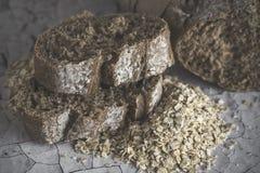 Nacos do pão integral Imagens de Stock