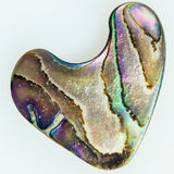 Nacre mother-of-pearl Abalone shaped like a heart Royalty Free Stock Photography