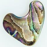 Nacre perłowa Abalone kształtujący jak serce Fotografia Royalty Free