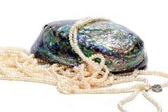 Nacre seashell and pearls Stock Photos