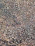 Nacreous с коричневой и голубой предпосылкой стоковое изображение