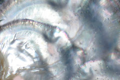 Nacreous matka perły tło Obrazy Royalty Free