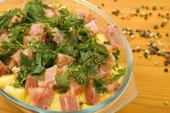 naczynia mięsa grule Fotografia Stock