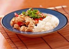 naczynia tofu weganin Fotografia Stock