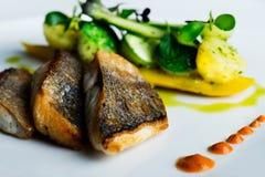 Naczynie dla rybich kochanków Zdjęcie Royalty Free