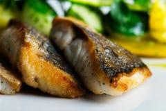 Naczynie dla rybich kochanków Obrazy Stock