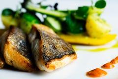 Naczynie dla rybich kochanków Fotografia Stock