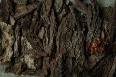 Naczynie na drzewnej barkentynie obrazy stock