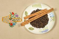 Naczynie z cynamonem i pieprzem Fotografia Stock