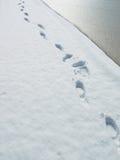 nad śnieżnymi śladami Obraz Royalty Free