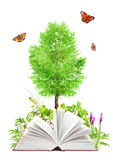 nad biel odosobniona książki natura ilustracja wektor