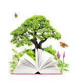 nad biel odosobniona książki natura obraz royalty free
