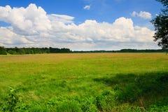 nad chmurny kwiaciasty łąkowy niebo Fotografia Stock