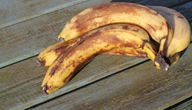 Nad dojrzałymi lub złymi bananami Fotografia Royalty Free