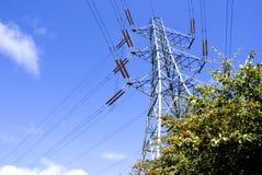 nad elektryczności pilonu drzewa Zdjęcia Stock