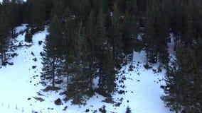 Nad górami zdjęcie wideo