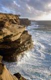 nad-havfolket silhouettes wild Arkivbilder