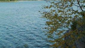 Nad patrzeć spokojnej zatoki (5 6) zdjęcie wideo