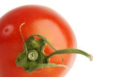 nad pomidorowym biel Obrazy Royalty Free