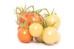 nad pomidorowym biel tło wiśnia Obrazy Stock