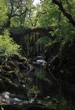 Nad r Faerie przerzuca most rozciągać się głębokiego wąwóz rzeka zdjęcie royalty free