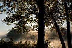 nad rzeką mgła ranek Fotografia Royalty Free