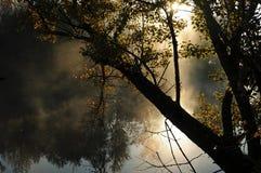 nad rzeką mgła ranek Zdjęcia Stock