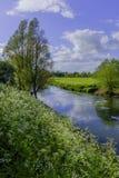 nad rzekę avon Obrazy Stock