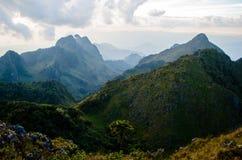 2195 nad teren jako chiang rożka dao wykoślawienia gromadzki doi wysokich przestawnych równych wapnia luang metrów halnych gór sz Zdjęcia Stock