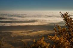 nad wodą łąkowy mgła ranek Fotografia Royalty Free