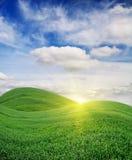 nad wschód słońca śródpolna zieleń Obraz Royalty Free