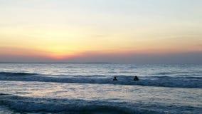 Nadada da família no oceano ou no mar Nascer do sol dourado do cenário do mar sobre o horison Swimer na água filme