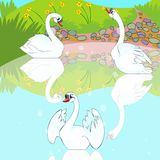 Nadada das cisnes no lago. ilustração do vetor
