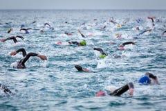 Nadada de Triathletes no começo da competição do triathlon de Ironman Fotos de Stock Royalty Free