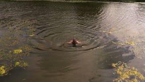 Nadada del hombre en la charca almacen de metraje de vídeo