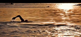 Nadada del océano de la salida del sol en el Balmoral, Sydney Imagen de archivo libre de regalías